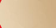 Internedia Globe GOLD AWARD